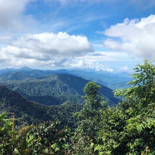 Výhľad z Mt. Brinchang