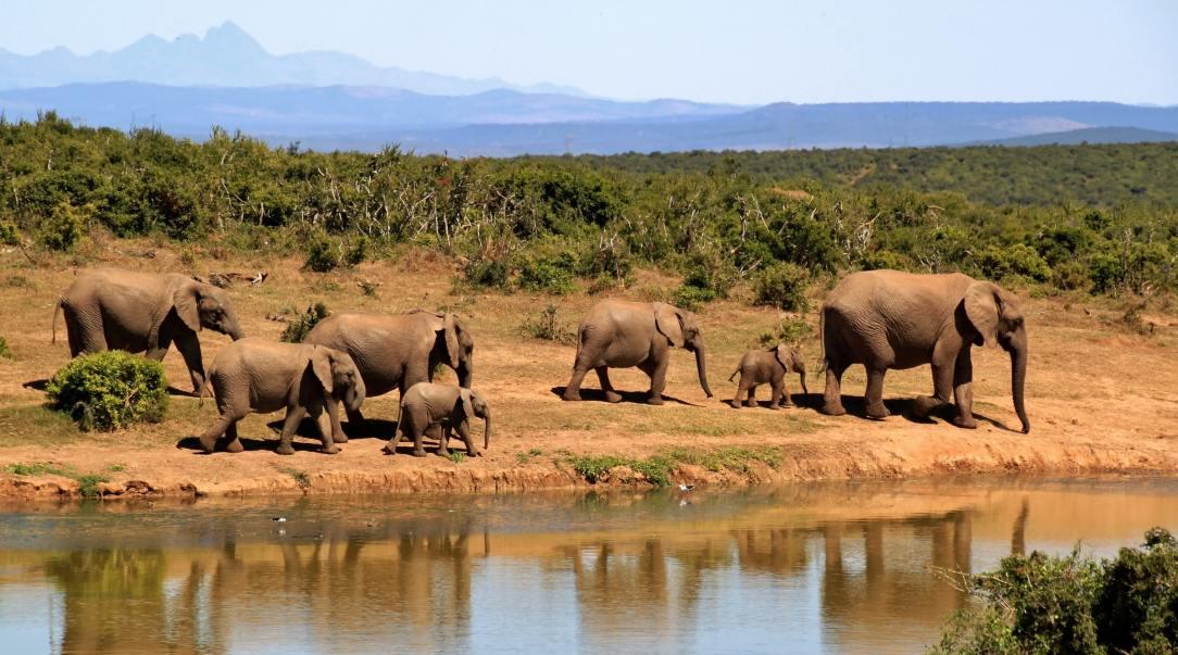 Poznávací zájazd Keňa